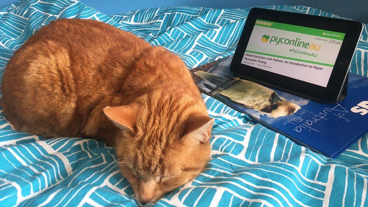 A sleeping cat, lying next a digital tablet showing an event livestream